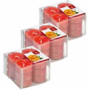 36x geurgeurkaarsen sinaasappel/oranje 4 branduren