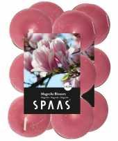 24x geurgeurkaarsen magnolia blossom roze 4 5 branduren