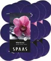 36x maxi geurgeurkaarsen wild orchid paars 10 branduren