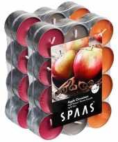 48x geurgeurkaarsen apple cinnamon 4 5 branduren