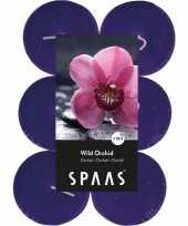 60x maxi geurgeurkaarsen wild orchid paars 10 branduren