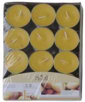 Mango geur geurkaarsen 24 stuks